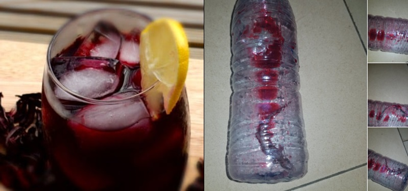 Woman reveals the shocking thing she found in her zobo drink after drinking it