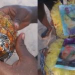 Bound photo of a man and a lady found inside a pineapple washed ashore (Photos)