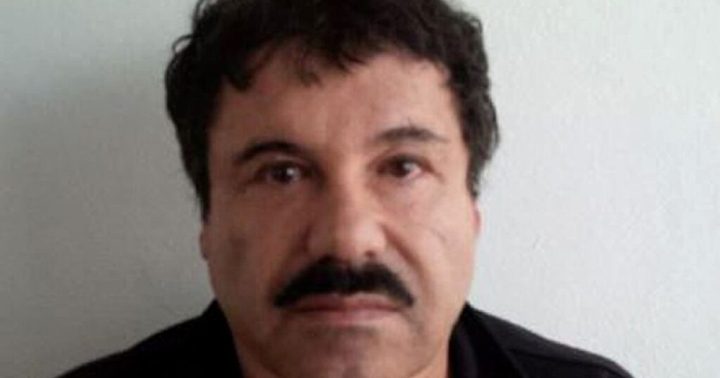Ordinary folks who got involved with drug cartels - and the horror that followed