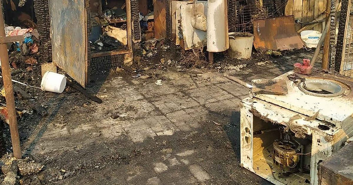 More than 30 dogs burn alive after 'suspected arson' at animal shelter