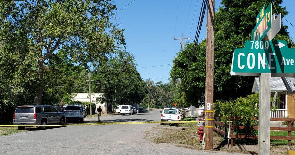 'Serial killer' tree surgeon 'slashed throats of five people before mid-murder arrest'