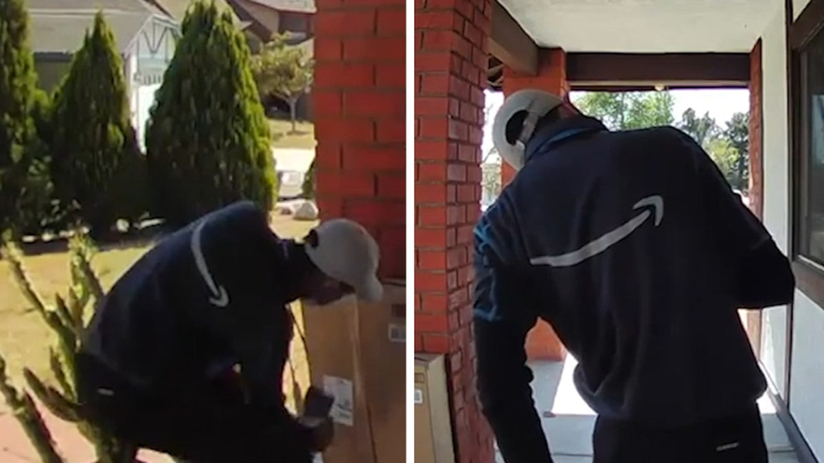Amazon Delivery Guy Pricked by Cactus, Struggles to Get Thorns Out of His Butt