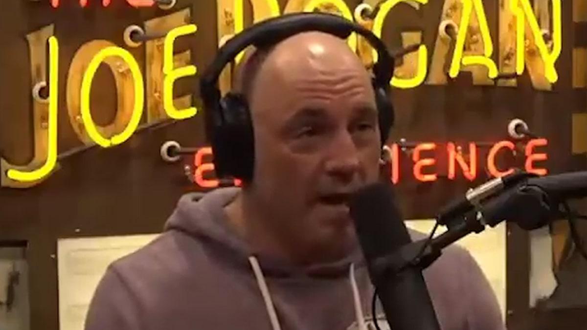 Joe Rogan Says 'Woke' Culture Will Be the End of Straight White Men