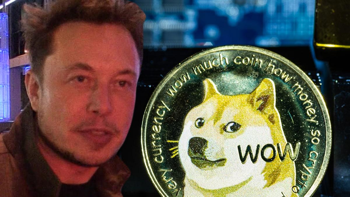 Dogecoin Value Tanks During Elon Musk's 'SNL' Hosting Gig
