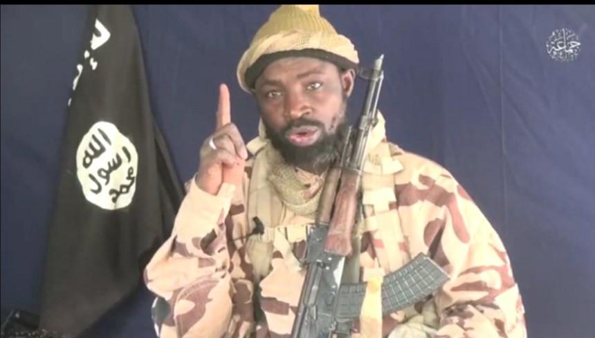 House of Reps member sacks aide for describing Boko Haram leader, Abubakar Shekau as ?true hero?