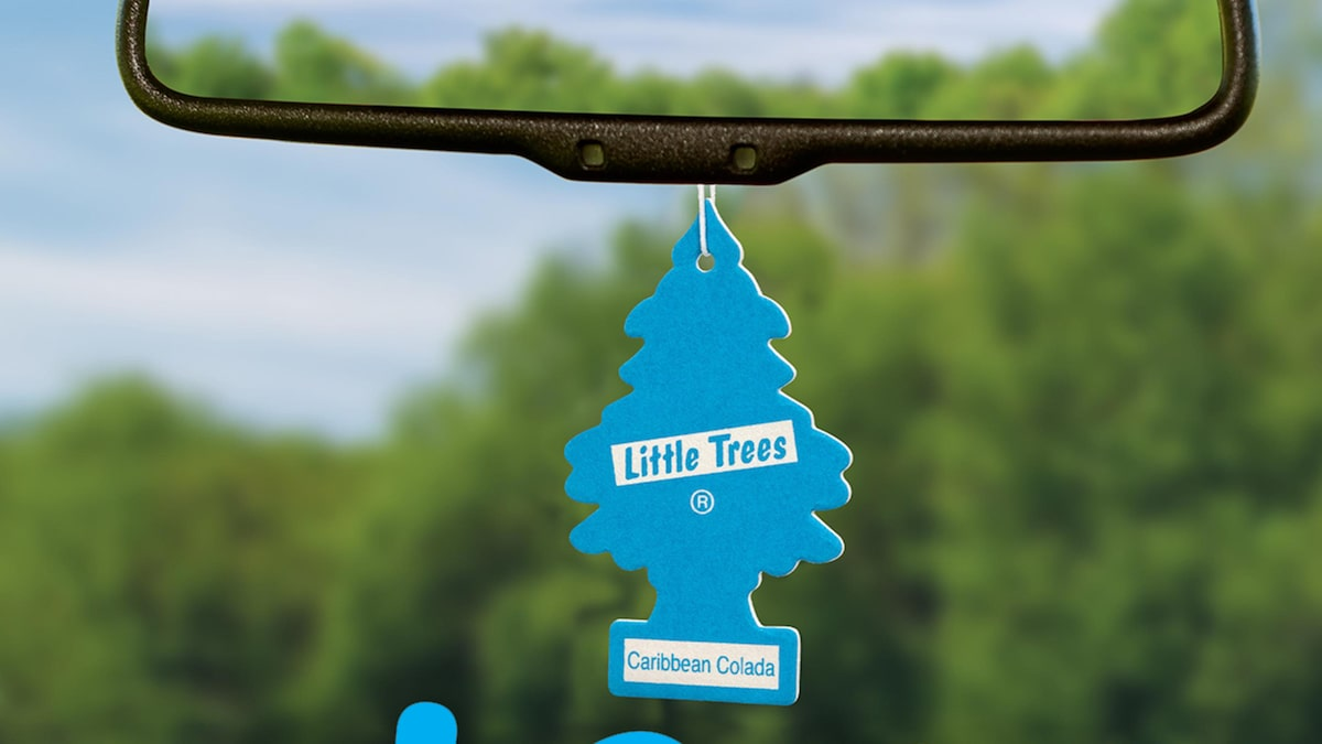 Little Trees Car Freshener Sues Chewy Over Dog Toy That Resembles Product