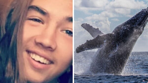 Teenager 'headbutted' by 10-metre whale leaping from sea wakes after eight-day coma