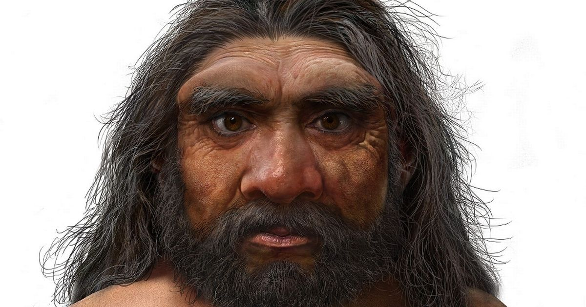 New 'Dragon Man' species of ancient humans could change entire history of evolution