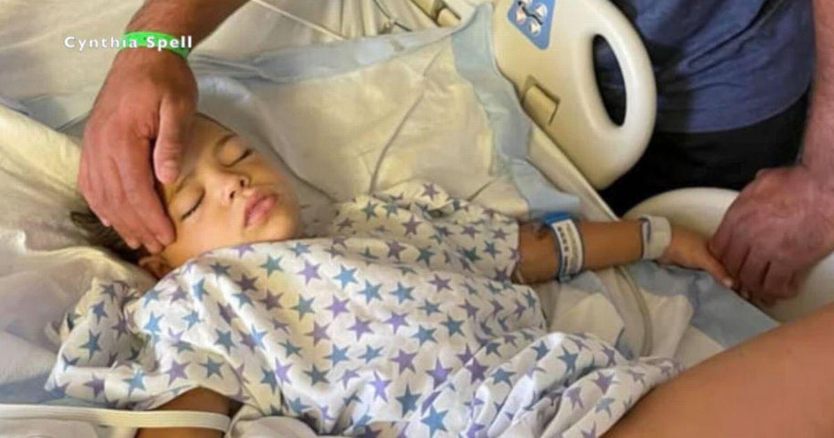 Girl, 5, bitten by rattlesnake and left fighting for her life as venom spreads