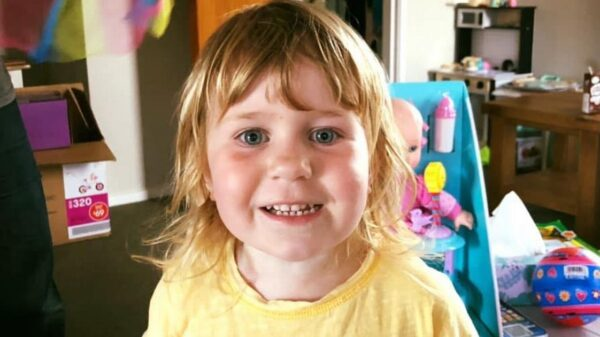 Girl, 3, dies in playground horror after dad landed on top of her in tragic accident