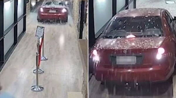 Drunk driver manages to reverse his car through pub towards alarmed punters