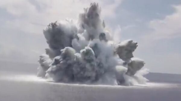 US Navy's huge 18,000kg bomb explosion that triggered earthquake sparks fears for fish