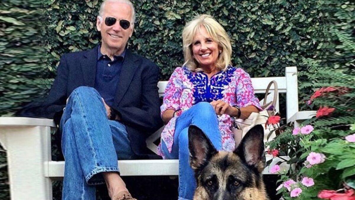 Joe and Jill Biden's Dog Champ Dies at 13