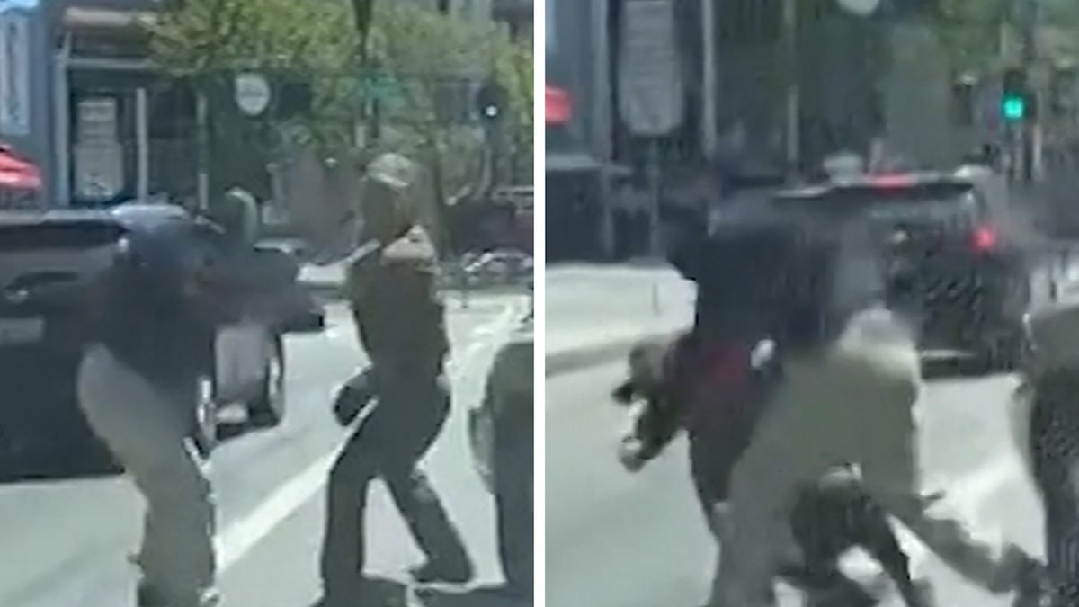 UPS Driver Brutally Attacked on San Francisco Street, Caught on Video
