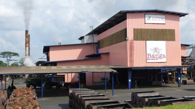 Okomu Oil Palm makes N7.78b profit, okays N7 dividend payout   The Guardian Nigeria News