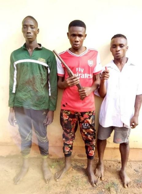 Police Arrest Eight For Cultism, Robbery, Recover Weapons In Enugu (Photos)