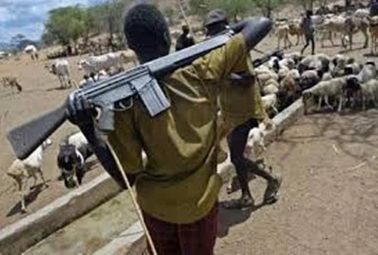 Security Alert,Fulani Herdsmen ,,,,Ondo Town, Armed,AK-47s,Source