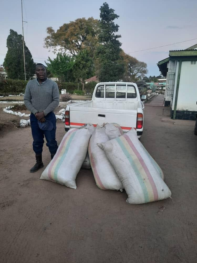 Police Officer Busted With Six Bales Of Mbanje In Marondera