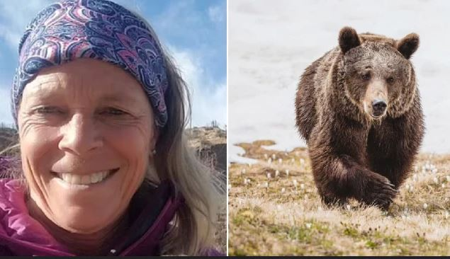 Horror! 65-Year-Old Woman Gets Pulled Out Of Tent And Mauled To Death By Grizzly Bear During Camping Trip