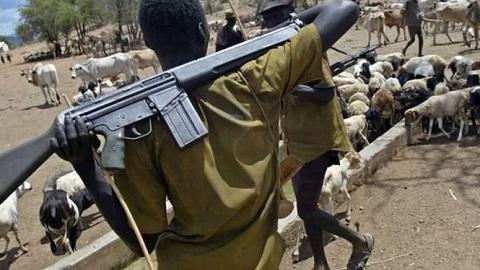 Suspected Herdsmen Kill Youth Leader 'Olori Odo', Injure 2 Others In Ibadan