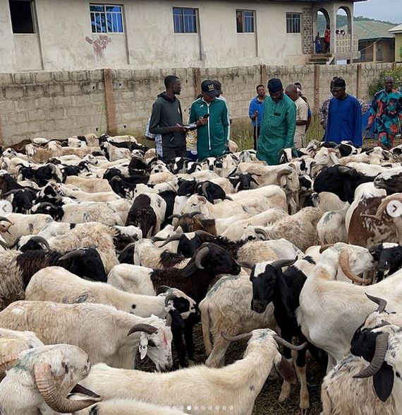 Shina Peller Donates Rams To 500 Families In His Constituency