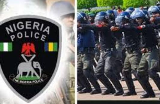 Police Recover Tricycle Containing Arms, Ammunition, Drugs In Delta