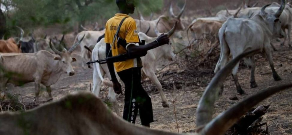 Why I Issued 30-Day Ultimatum To Criminal Herders In Taraba Forests