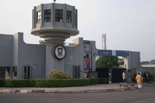About 10 Persons Died From COVID-19 In University Of Ibadan – Vice Chancellor
