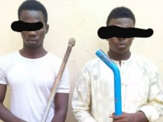 Police Arrest Four Suspects For Armed robbery, Culpable Homicide In Yobe