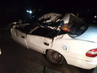 Four Die As Car Crushes Into Elephant In Sioma
