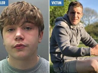 HORROR MURDER 'Extremely dangerous' teen who stabbed dad, 31, with 'combat dagger' after row jailed for life