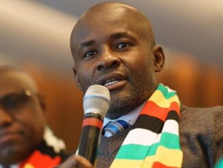 President ED Is Being Misled: Temba Mliswa Issues Warning