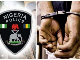 25-year-old man arrested for allegedly having sex with goat in Jigawa