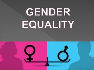 'Government Must Prioritize Gender Responsive Public Services'