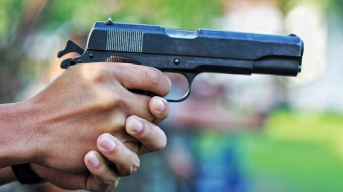 Report All Gun Owners That You Know To The Police: ZRP