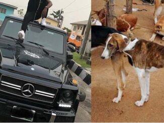Nigerian man, narrates ,friend , Benz ,dog ,money rituals